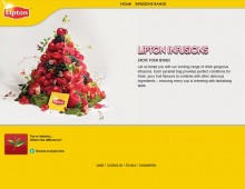 Lipton Infusions